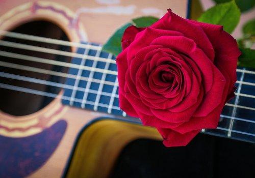 XVI Зональный конкурс «Юный гитарист»